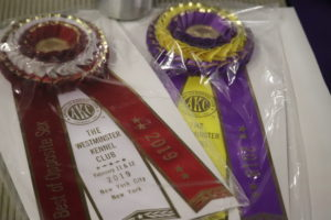 First and Second place best of breed ribbons for best of breed rough coated collies